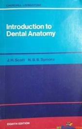 Introduction to Dental Anatomy