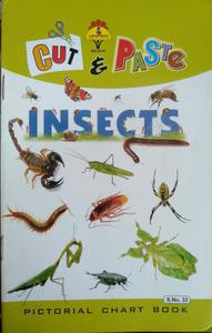 Insects Pictorial chart book S.No.32 in English